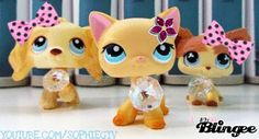 Littlest Pet Shop Popular | littlest pet shop popular barbie dolls Picture #126896425 | Blingee ...