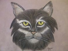 Cat:  colored pencil on suede board