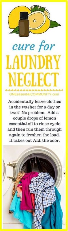 click to see all 31 great tips- there's even a FREE PRINTABLE of all 31 ideas!! genius essential oil tip #31 -- Do you ever forget and leave your laundry in the wash for too long? I know I do. Simply add 2-3 drops of lemon essential oil to the laundry and re-wash. And voila, laundry is as good as new! Not only does it smell fresh and clean, but it IS fresh and clean.