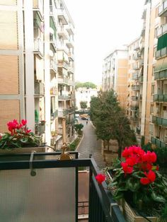 #WhereShouldYouStayInRomeItaly: Green Line, 10-minute walk from Trastevere area, offers parking, airport shuttle, air conditioning, seating area, Wi-Fi... College Walls, Airport Shuttle, Rome Italy, Conditioning, Wi Fi, Backdrops, Street View, Wall Decor, Green