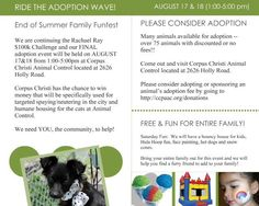 Last adoption event for Rachael Ray Challenge - ALL Animals $10 or less!