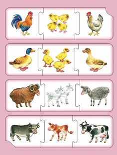 1 million+ Stunning Free Images to Use Anywhere Farm Animals Preschool, Farm Animal Crafts, Preschool Learning Activities, Animal Activities, Preschool Worksheets, Kids Learning, File Folder Activities, Free To Use Images, Math For Kids