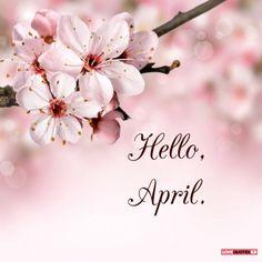 Hello, April.