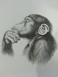 The Thinker. Pencil drawing.
