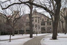 University of Chicago 2 | Thru My Eyes