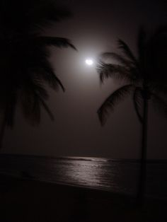 Night Sky Under The Same Moon, Over The Moon, Stars And Moon, Good Night Sweet Dreams, Good Night Moon, Night Time, Jamaican Festival, Moon Lovers, Romantic Places
