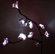 How to make Cherry-Blossom Lights! So pretty...