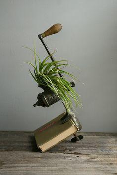 #vintage meat grinder planter