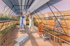 Mars greenhouse by Robert Murray