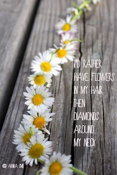 Flowers in my hair~ put a flower on each person as they arrive later tell them to use it as a reminder to pray for Brittany until she gives birth Bow Quotes, Daisy Quotes, Flower Quotes, Daisy Love, Daisy Art, Daisy Daisy, Morning Pictures, Morning Pics, Genius Quotes