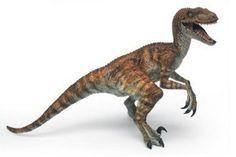 Velociraptor!!!