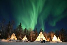 This week marks the best time to see the aurora borealis as it begins its colorful dance across the night sky. From a glass igloo, to a dogsled, here are the best ways to see the northern lights.