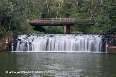 Malanda Falls  Atherton Tablelands, Queensland, Australia Atherton Tablelands, Queensland Australia, Australia Travel, Waterfalls, Australia Destinations, Waterfall, Falling Waters