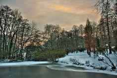 Dortmund Rombergpark im Winter 01   by Daniel Mennerich
