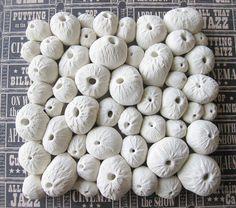 sea urchin molded clay