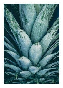 Pineapple Crown Julisteet