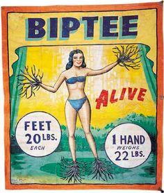 Biptee- Side show art