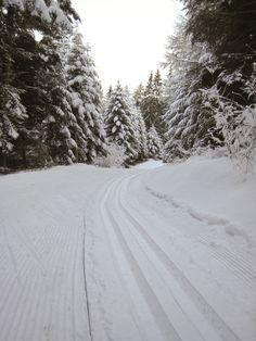 Cross Country Skiing, Snow And Ice, Winter Season, Winter Wonderland, Beautiful Places, Seasons, Mood, Mountains, Living Room