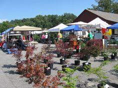 Wednesday is Market Day at Weaverville Tailgate Market in North Carolina 2:30 - 6:30pm behind Community Center at 60 Lakeshore Drive overlooking Lake Louise http://www.farmersmarketonline.com/fm/WeavervilleTailgateMarket.html