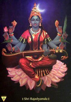Dasha (ten) Mahavidya Part Four Dhumavati, Bagalamukhi, Matangi and Kamala… Saraswati Goddess, Indian Goddess, Goddess Art, Goddess Lakshmi, Mother Kali, Divine Mother, Lord Shiva Family, Tanjore Painting, God Pictures