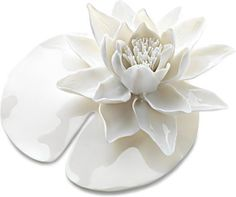 Nymphenburg Table Flowers: Water Lily Limited Edition