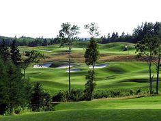 Eagles Glenn Golf P.E.I. Prince Edward Island, Eagles, Ontario, Golf Courses, Canada, Sport, Beautiful, Deporte, Eagle