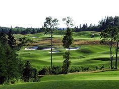 Eagles Glenn Golf P.E.I.