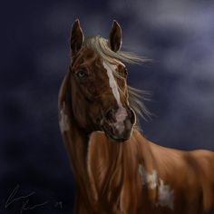 horse head - Google Search