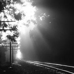 Walkin' the Tracks