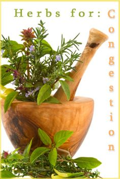 Apothecary 101 - Natural Remedies Herbal Apothecary medicines in your kitchen using just a few herbs and understanding a few simple techniques.Herbal Apothecary medicines in your kitchen using just a few herbs and understanding a few simple techniques. Natural Remedies For Depression, Herbal Remedies For Anxiety, Natural Home Remedies, Healing Herbs, Medicinal Plants, Natural Healing, Herbal Plants, Aromatic Herbs, Holistic Healing