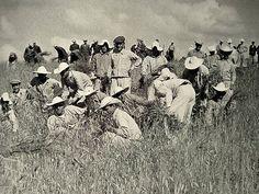 Konya -Ereğli, 1950 İvriz Köy Enstitüsü'nde ekin hasadı Diy And Crafts, History, Painting, Yandex, Science, Historia, Painting Art, Paintings, Painted Canvas