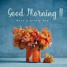 Good Day Images, Good Morning Photos Download, Latest Good Morning Images, Good Morning Images Flowers, Good Morning Roses, Cute Good Morning, Good Morning Picture, Good Morning Messages, Good Morning Greetings