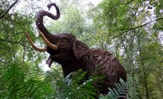Life size Wicker Elephant, Glenkens, UK.  by Trevor Leat.  www.trevorleat.co.uk