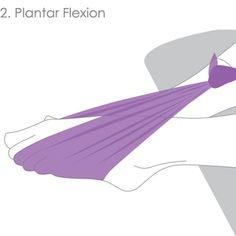 plantar flexion foot exercise for dancers