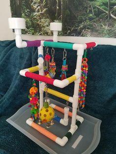Conure Cage, Conure Bird, Diy Parrot Toys, Diy Bird Toys, Cockatiel Toys, Parakeet Toys, Bird Play Gym, Homemade Bird Toys, Parrot Play Stand