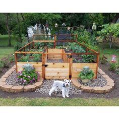 8 ft x 12 ft Western Red Cedar Raised Garden Bed garden beds Garden Design Plans, Backyard Garden Design, Backyard Landscaping, Home Garden Design, Diy Garden Bed, Fence Design, Backyard Ideas, Home Vegetable Garden Design, Stone Backyard