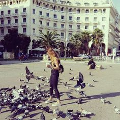 dove <3 If you have a wings just fly hight to the sky ⛅ #memories #bird #dove #birds #thessaloniki #instapeople