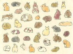 So. Many. Bunnies.
