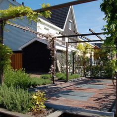 Voortuin on pinterest tuin pergolas and met - Smeedijzeren pergolas voor terras ...