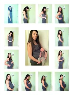 Monthly Pregnancy Pictures