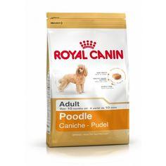 ROYAL CANIN POODLE ADULT KG 1,5   Alimento specifico per Barboni adulti, oltre i 10 mesi  Royal Canin ha studiato ricette specifiche per ogni tipo di razza: la gamma Breed Health Nutrition.  18,50 €  https://www.pets-house.it/per-cani-adulti/4435-royal-canin-poodle-adult-kg-15-3182550743174.html