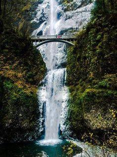 Multnoma Falls is Freezing up ;)