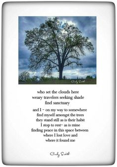 The space between~ Cindy Smith