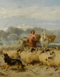 Richard Ansdell GATHERING THE FLOCK Collie