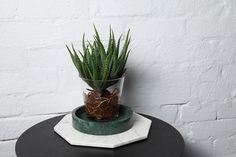 Kindred by Marble Basics is a place for usable home objects that are kindred with one another to create an honest home. Marble Trays, Trivets and Bowls. Home the original Marble Homeware. Marble Tray, Round Tray, Planter Pots, Core, Objects, Autumn, Winter, Baby, Collection