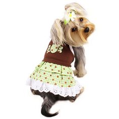 Adorable chocolate mint candy dog dress with layered ruffles and polka dots. Accented with lace and embroidered trim around the candy patch. Fancy Bed, Puppy Diapers, Really Cute Dogs, Cute Dog Clothes, Mint Candy, Designer Dog Clothes, Pet Boutique, Dog Dresses, Collar And Leash
