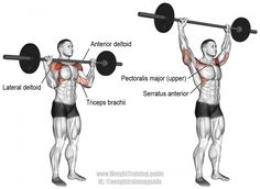 Standing barbell overhead press exercise