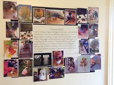 Embracing Reggio principles in practice, I am committed to research. Kindergarten Inquiry, Inquiry Based Learning, Project Based Learning, Classroom Activities, Early Learning, Preschool Assessment, Preschool Ideas, Classroom Decor, Reggio Emilia Classroom