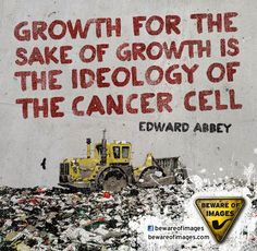 Edward Paul Abbey (January 29, 1927 – March 14, 1989) was an American author and…
