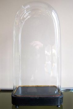 Large selection of empty antique glass domes available .